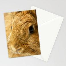Little Rabbit II Stationery Cards