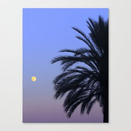 Cool Tropical Essence Canvas Print