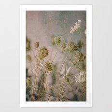 Summer Botanical -- Queen Anne's Lace Still Life Art Print