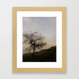 The Rugged Individualist Framed Art Print