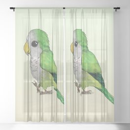 Very cute green parrot Sheer Curtain