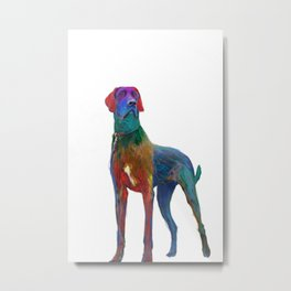 Great Dane Uncropped Metal Print