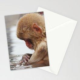 Bath time. Snow Monkey, Japan Stationery Cards