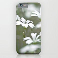 Stitchwort. iPhone 6s Slim Case