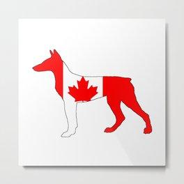 Canada Doberman Metal Print