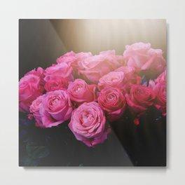 Bright Pink Roses Metal Print