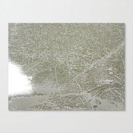 Frozen Etchings Canvas Print