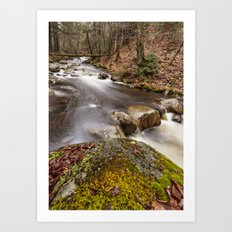 a river in the woods Art Print