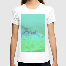 Joffre's Lapse T-shirt