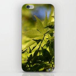 Slope iPhone Skin