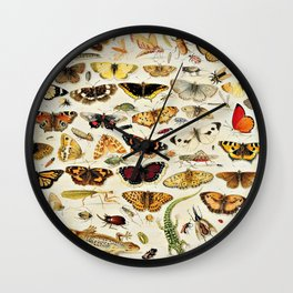 "Jan van Kessel the Elder ""An Extensive Study of Butterflies, Insects and Seashells"" Wall Clock"