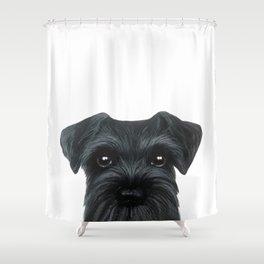 New Black Schnauzer, Dog illustration original painting print Shower Curtain