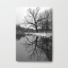 Forest Park Reflections II Metal Print