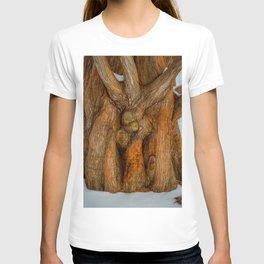 The Embrace by Teresa Thompson T-shirt