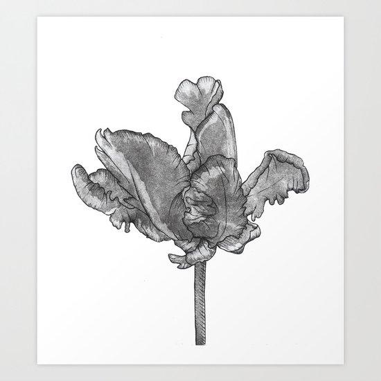 Monochromatic Orchid Art Print