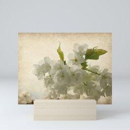 Blossoms Mini Art Print