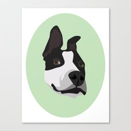 Silly Pitbull Canvas Print