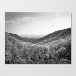 Devil's Garden Canvas Print