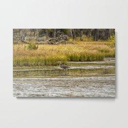 Heron on Snake River No. 2 - Grand Tetons Metal Print