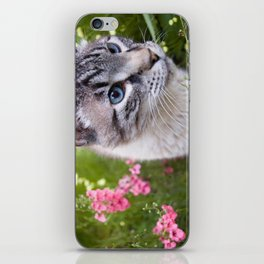 kitty in secret garden iPhone Skin