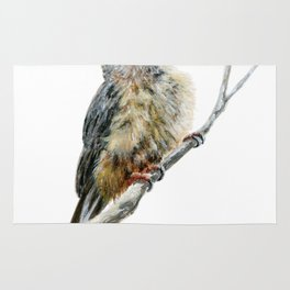 Speckled Mousebird by Teresa Thompson Rug