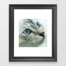 Mimi the cat Framed Art Print