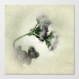 Praxelis Purple Wildflowers Canvas Print