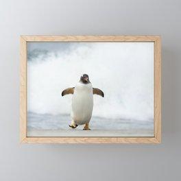 Joyful Gentoo penguin on a beach  Framed Mini Art Print
