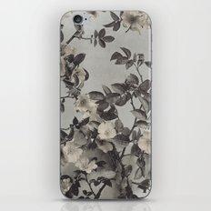 Vintage Hand Colored Dogwood Flower iPhone & iPod Skin