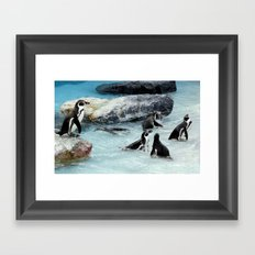 Penguins. Framed Art Print