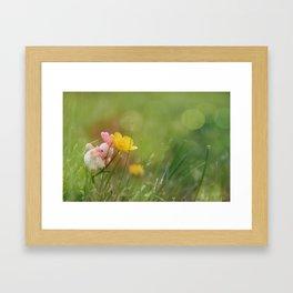 Journeying Rabbit V Framed Art Print