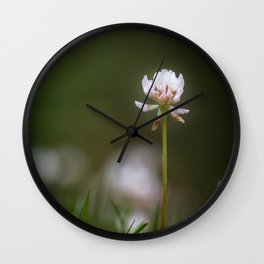 One clover flower in grass Wall Clock