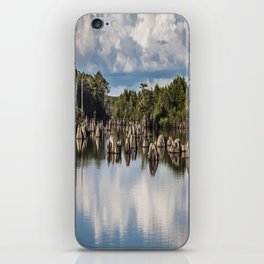 Dead Lakes Florida  iPhone Skin