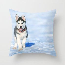 Siberian Husky pup Throw Pillow