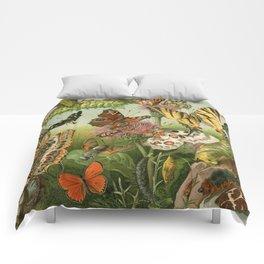 Butterflies & Caterpillars Comforters