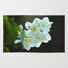 Jasmine flower Rug