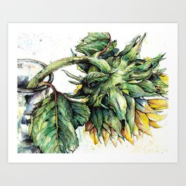 Summer Sunflower Art Print