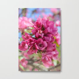 A bunch of red flowers. Metal Print