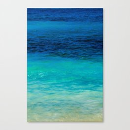 SEA BEAUTY Canvas Print