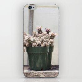 Three Little Cacti iPhone Skin
