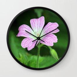 Pink Geranium Dew Wall Clock