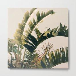 Tropic Sky Metal Print