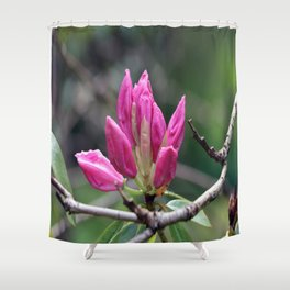 A Splash of Pink Shower Curtain