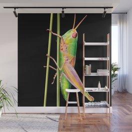 Grasshopper Wall Mural
