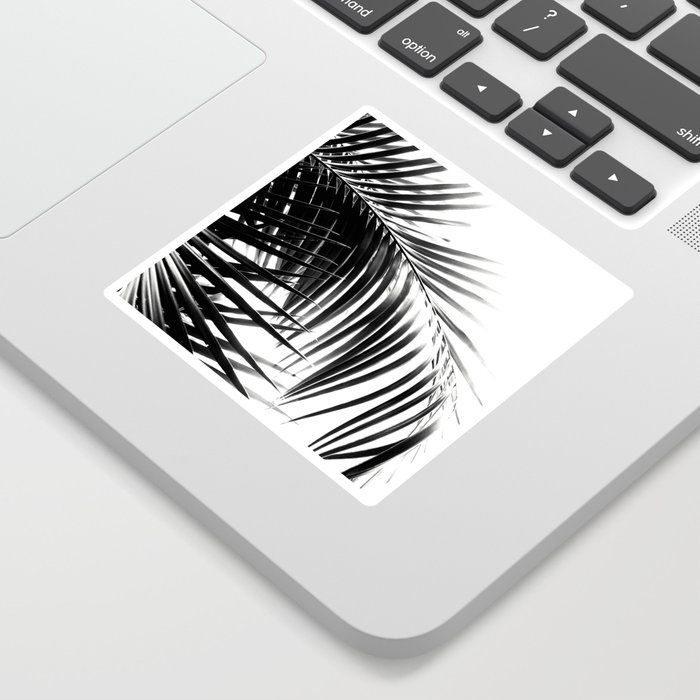 Palm Leaves Black & White Vibes #3 #tropical #decor #art #society6 Sticker