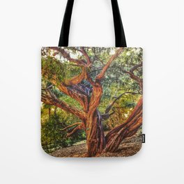 The life of a tree Tote Bag