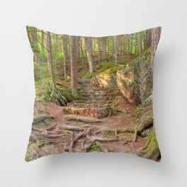 Green Mountain Forest Trail Throw Pillow