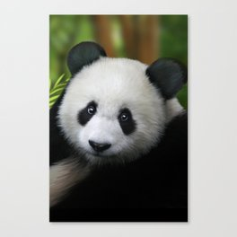 Giant Panda Cub Canvas Print