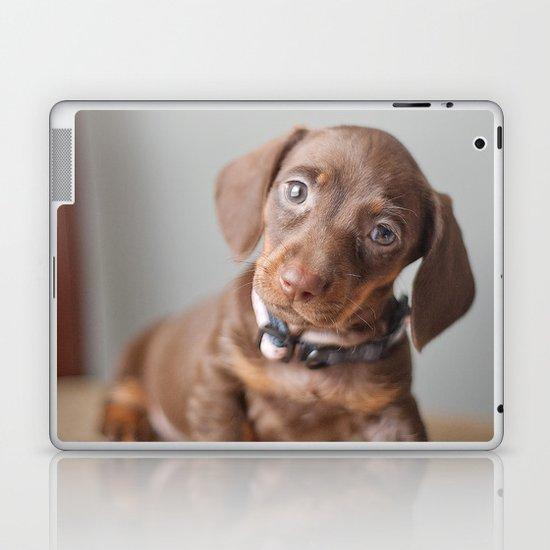 Dachshund Puppy Laptop & iPad Skin