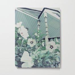 Rose of Sharon ~ flower photography Metal Print
